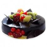 Chocolate Fruit Gateau