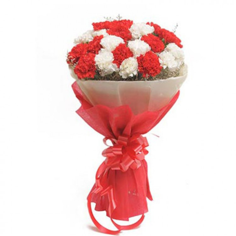 Red N White Carnations